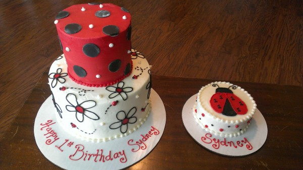 Lady Bug First Birthday and smash cake